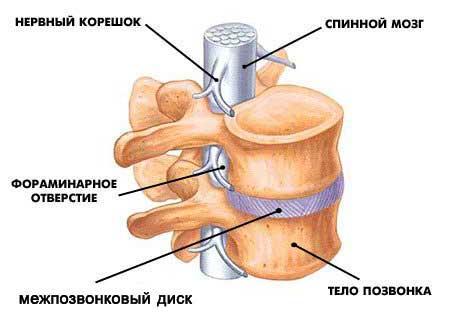 При повороте на бок резкая боль в спине